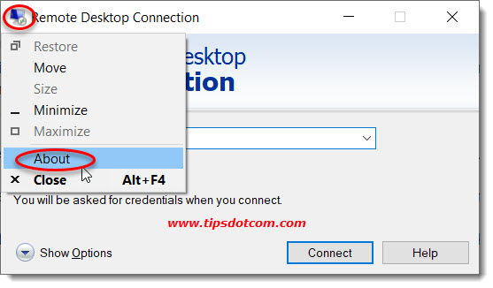 Remote desktop connection client version information