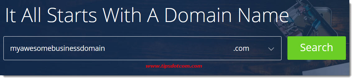 The Bluehost domain page