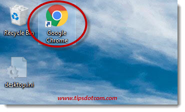 Google Chrome Desktop Icon 06