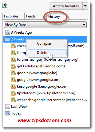 How to Delete Internet History Step 05