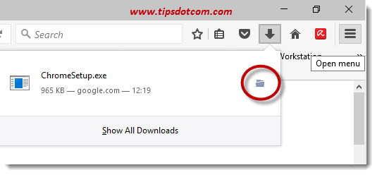 How To Download Google Chrome 20