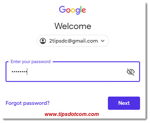 Enter your Gmail account password