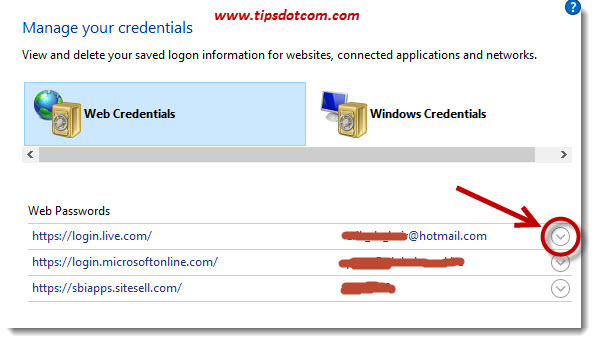 View Saved Passwords In Microsoft Edge 06